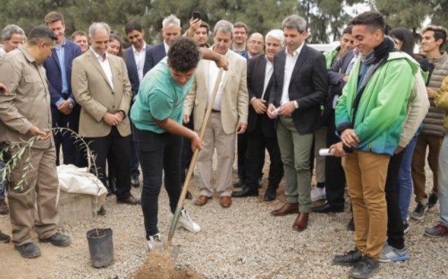 San Juan tendrá la fábrica de aceite de oliva más grande de Latinoamérica
