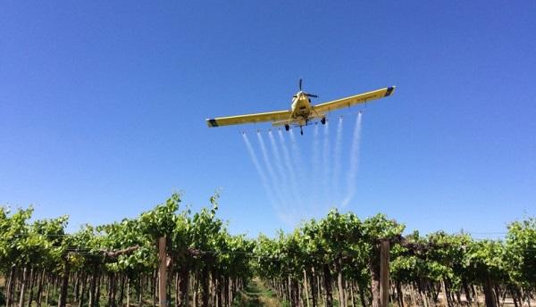 Comienzan las aplicaciones aéreas para combatir la Lobesia Botrana en Sarmiento