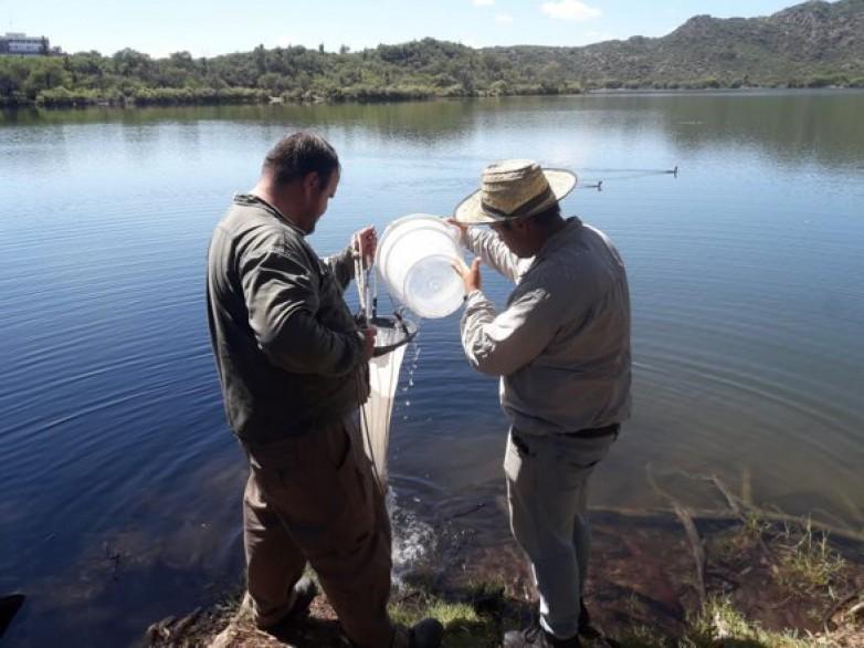Valle Fértil: realizan monitoreos en ríos y espejos de agua del departamento