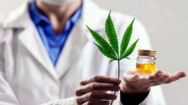 Se aprobó el Plan de Cultivo para Cannabis Medicinal San Juan