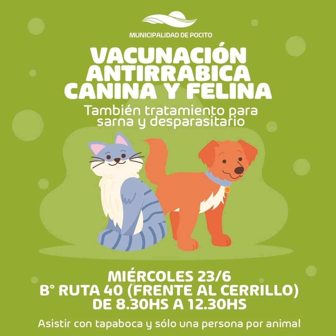Operativo de vacunación antirrábica en Pocito
